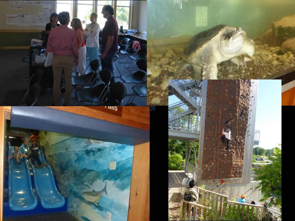 Urban Ecology Center Collage